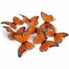 Monarch Butterfly Garland