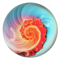 Nautilus Art Glass Paperweight Blue/Coral
