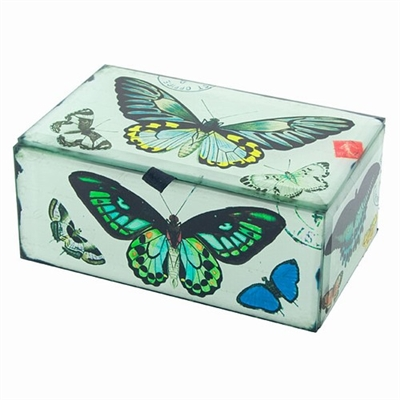 Butterfly Glass Box