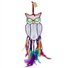 Owl Dream Catcher Rainbow