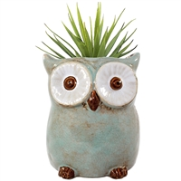 Ceramic owl vase or planter.