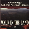 WALK IN THE LAND - audio CD