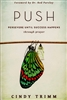 PUSH Persevere Until Success Happens by Cindy Trimm