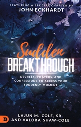 Sudden Breakthrough by LaJun and Valora Cole