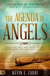 Agenda of Angels by Kevin Zadai