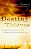 Destiny Thieves by Sandie Freed
