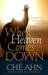 When Heaven Comes Down by Che Ahn
