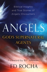 Angels Gods Supernatural Agents by Ed Rocha