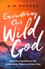 Encountering Our Wild God by Kim Meeder