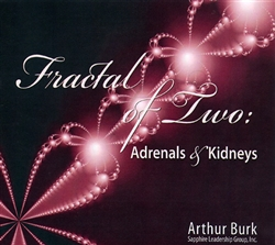 Fractal of Two: Adrenals and Kidneys by Arthur Burk