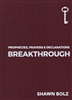 Breakthrough by Shawn Bolz