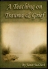Teaching on Trauma & Grief by Janet Sudduth