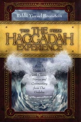 Haggadah Experience The Pesach Haggadah with Classic Stories and Commentary From Our Gedolim