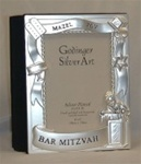 Photo Album - Bar Mitzvah