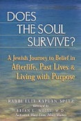 Does the Soul Survive? A Jewish Journey to Belief in Afterlife, Past Lives & Living With Purpose