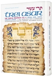 Artscroll Tanach Series - Trei Asar/The Twelve Prophets 1