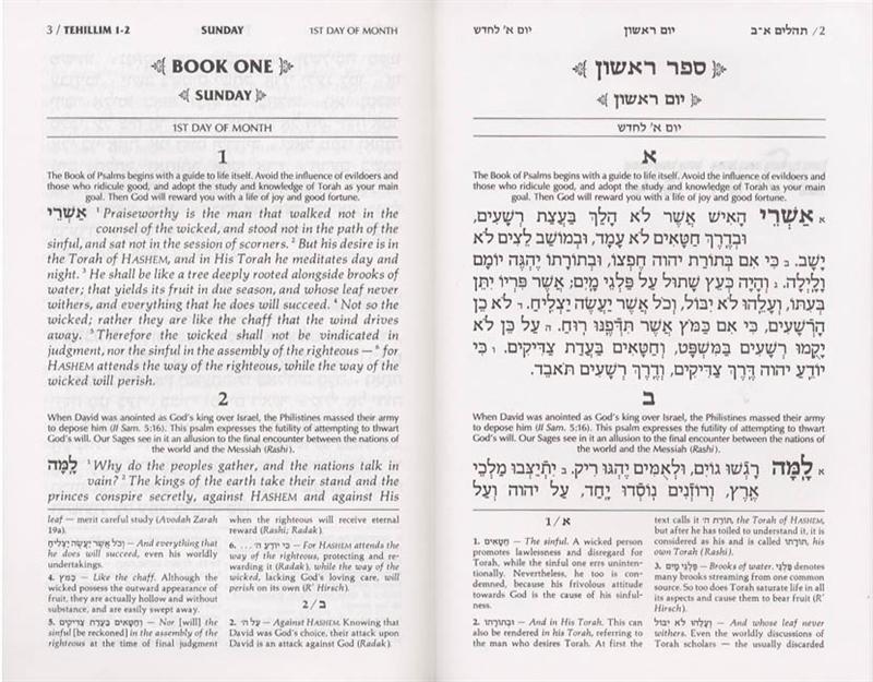 Artscroll Tehillim / Psalms - alljudaica com