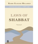 Peninei Halakha: Laws of Shabbat Vol. 1
