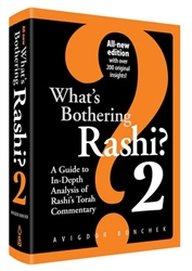 What's Bothering Rashi? 2