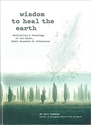 Wisdom to Heal the Earth: Meditations and Teachings of the Lubavitcher Rebbe
