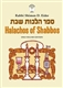 Halachos of Shabbos