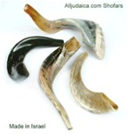 Shofar - Simple