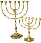 7-Branch Menorah