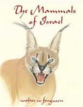 The Mammals of Israel