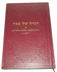 Haggadah with Insights