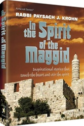 In the Spirit of the Maggid: Inspirational Stories that Touch the Heart and Stir the Spirit