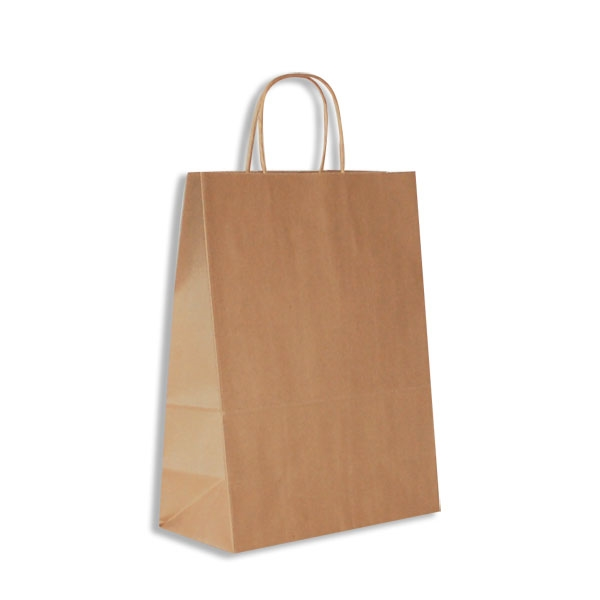 349e30c75cd Antelope 100% Recycled Kraft Paper Shopping Bags-Medium - 10 x 5 x 13