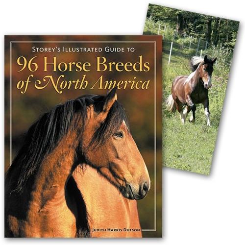 Horse Breed Books