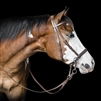 Bitless Bridles by Dr. Cook - Beta