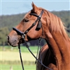 Barefoot Amber Bridle 2 in 1