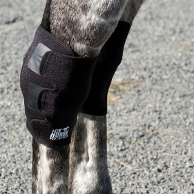 Ice Horse Hock Wraps