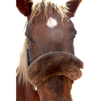 JMS Noseband Sheepskin Covers