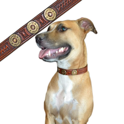 California Equine 12g Shotgun Shell Dog Collars