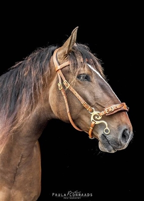 DP Saddlery Soft Feel Baroque Hackamore Bridles
