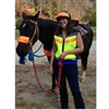 Da Brim Equestrian Endurance Helmet Visors Petite