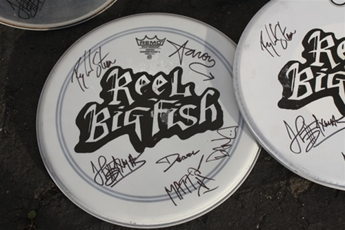 Autographed Drum Head Used By Band White
