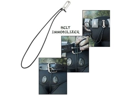picasso belt immobilizer