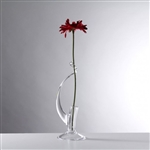 Teign Valley Glass Single Stem Vase
