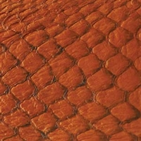Fish Leather - Citrus Gloss