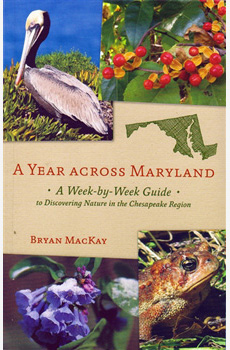 A Year Across Maryland