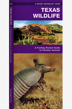 Texas Wildlife: A Folding Pocket Guide to Familiar Animals in the state of Texas