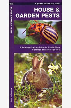 House & Bugs and Garden Pests