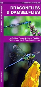 Waterproof folding naturalist guide to very similar insect species.