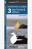 Waterfowl ID Series:Sea Ducks & Others (3)