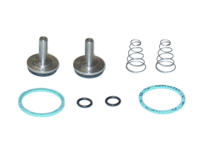 Leonard Kit 4/M20 or 4-M20 Checkstop Kit
