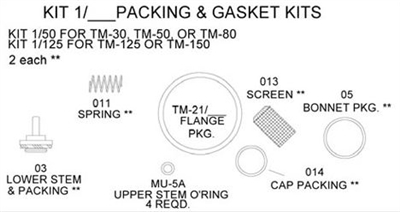 Leonard Kit 1/125 Packings and Gaskets Kit